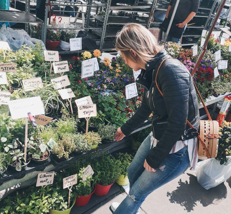 Proef mee op de Vogeltjesmarkt in Antwerpen!